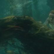 136398Fantastic-Beasts:-The-Crimes-of-Grindelwald-17.