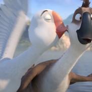 158266Duck-Duck-4.